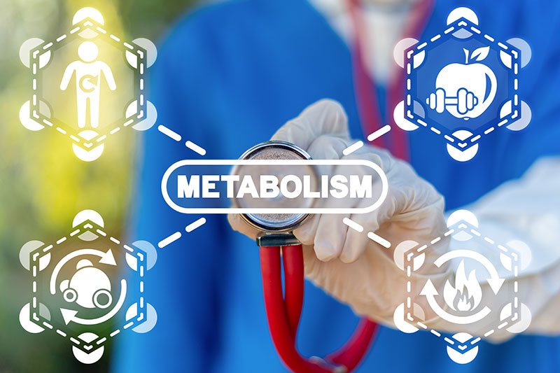 Informationen zu Ihrem Stoffwechsel